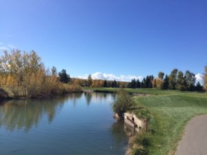 Fall colors are out. Elbow 4th Hole. My ball was closest to the pin of the four but we were all on the green.